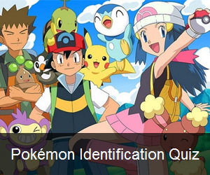 Try the Pokémon Identification Quiz